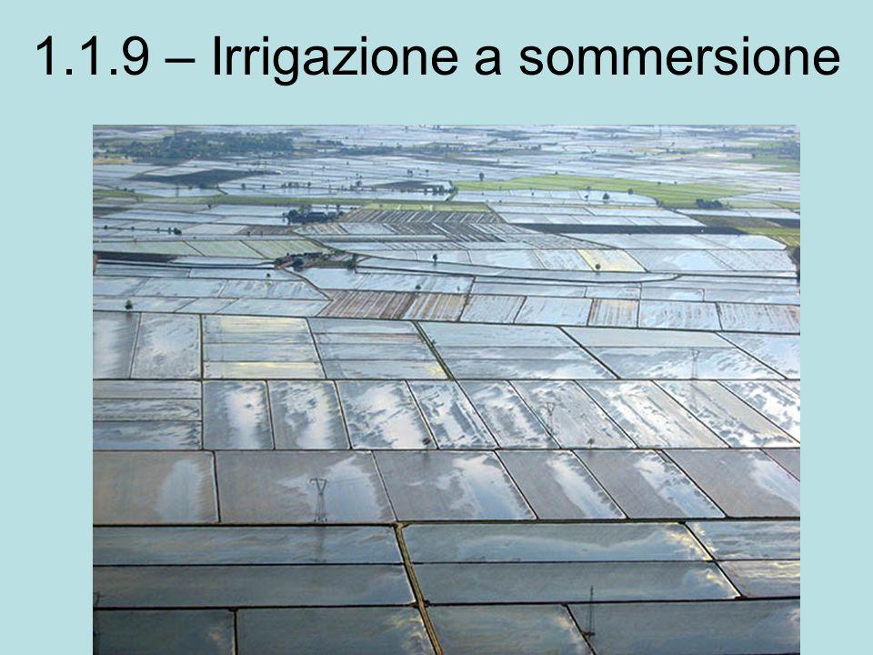 1.1.9 – Irrigazione a sommersione