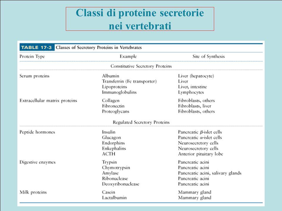 Classi di proteine secretorie nei vertebrati