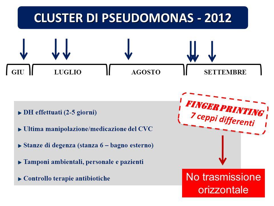 CLUSTER DI PSEUDOMONAS - 2012