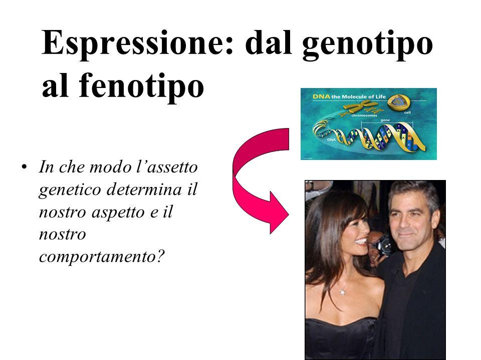 Espressione: dal genotipo al fenotipo