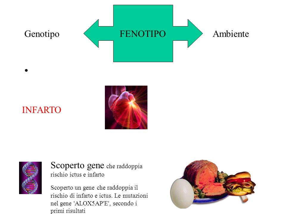 Scoperto gene che raddoppia rischio ictus e infarto