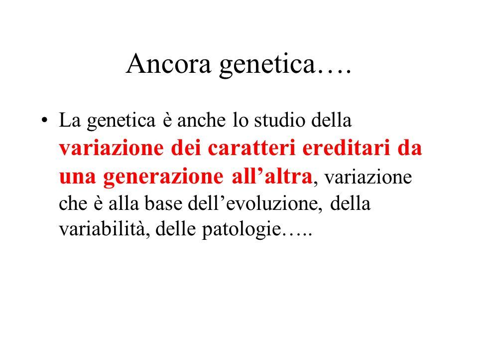 Ancora genetica….