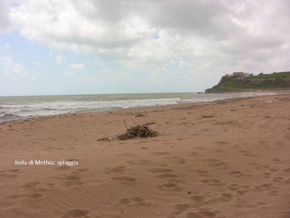 Isola di Mothia: spiaggia