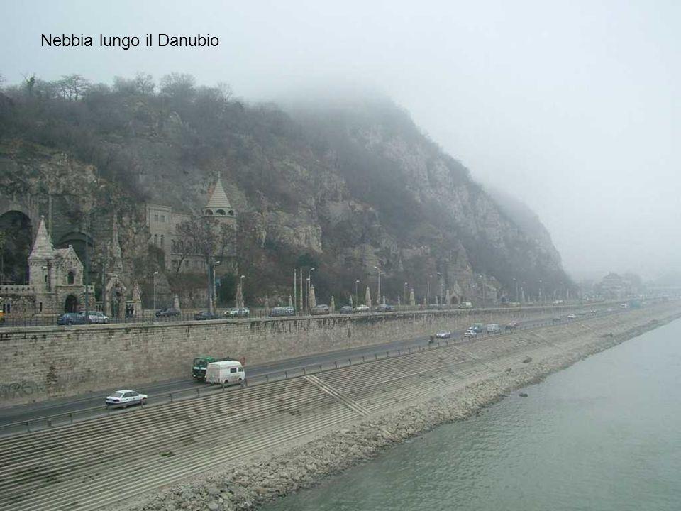 Nebbia lungo il Danubio