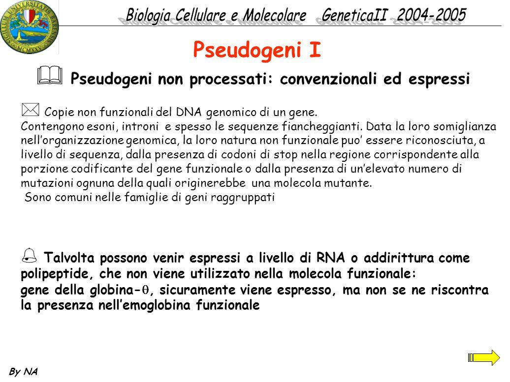 Pseudogeni I Pseudogeni non processati: convenzionali ed espressi