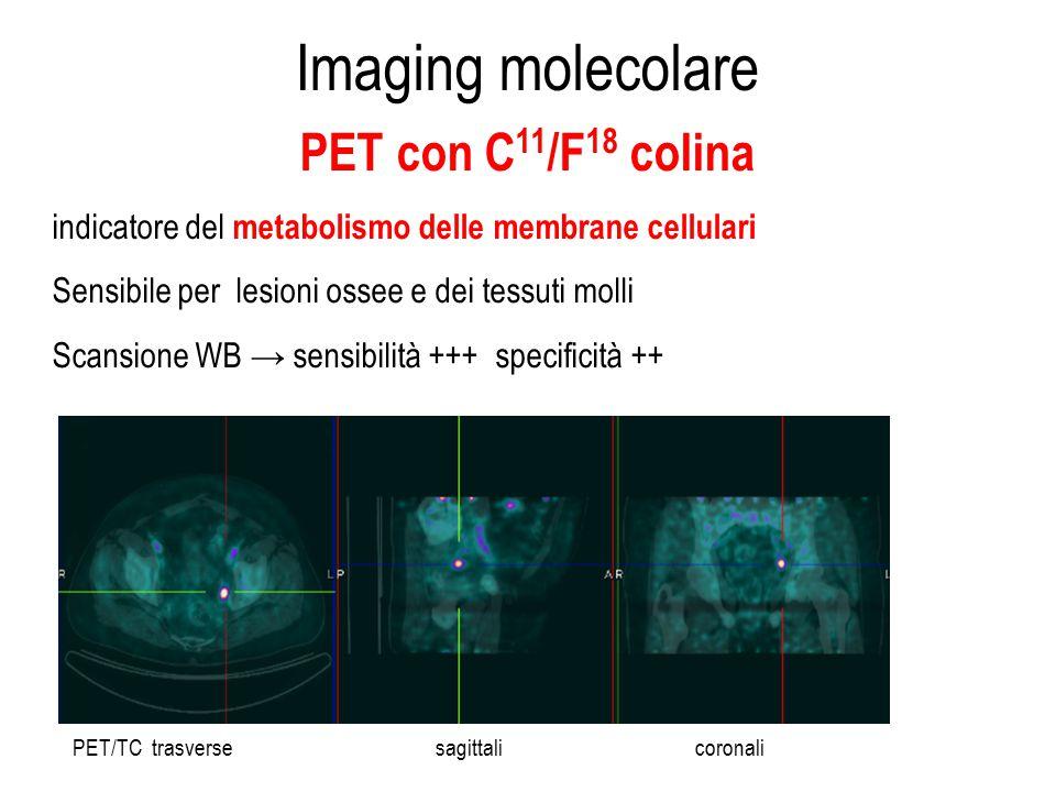 Imaging molecolare PET con C11/F18 colina