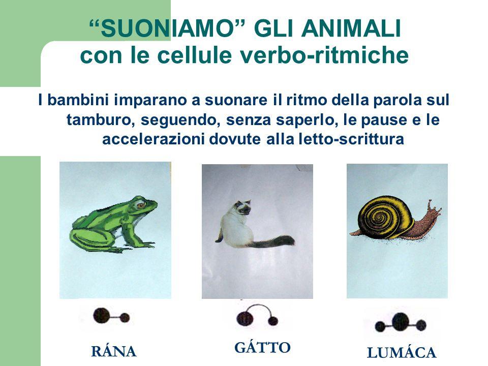 SUONIAMO GLI ANIMALI con le cellule verbo-ritmiche