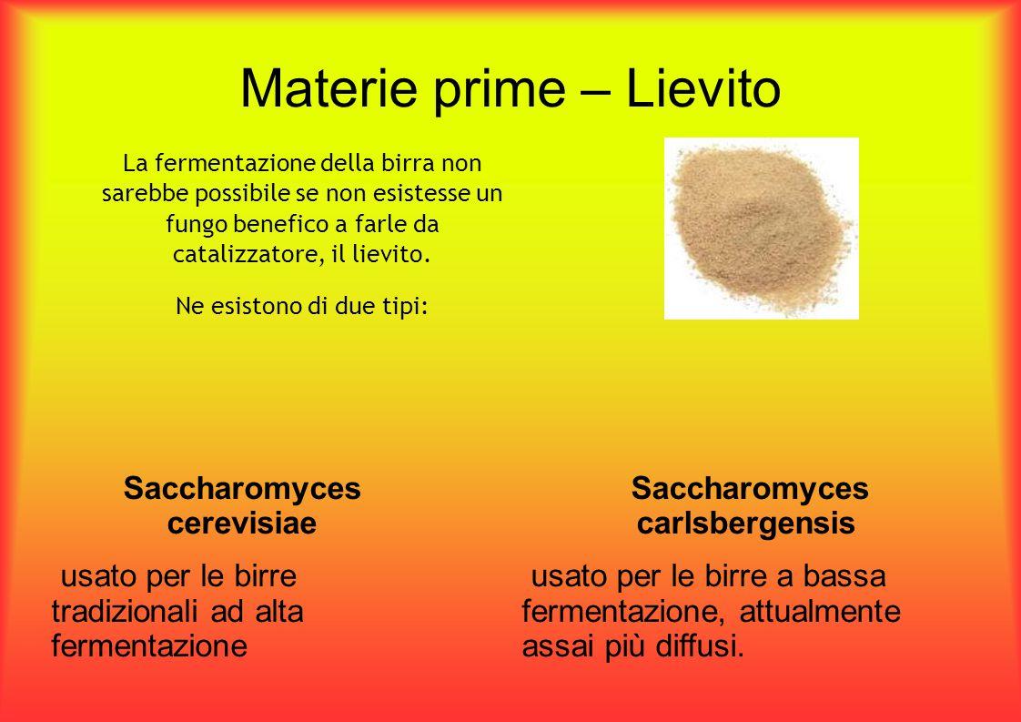 Materie prime – Lievito