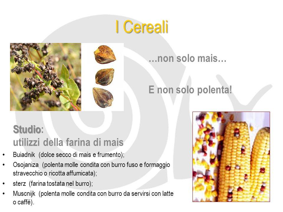 I Cereali …non solo mais… E non solo polenta!