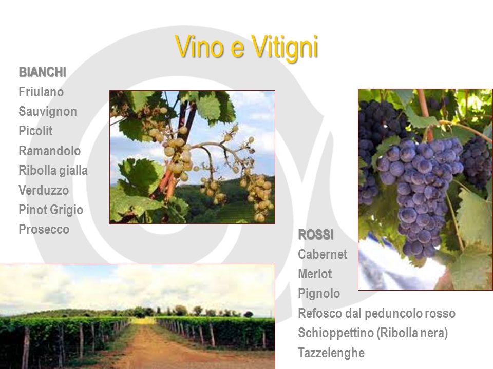 Vino e Vitigni BIANCHI Friulano Sauvignon Picolit Ramandolo
