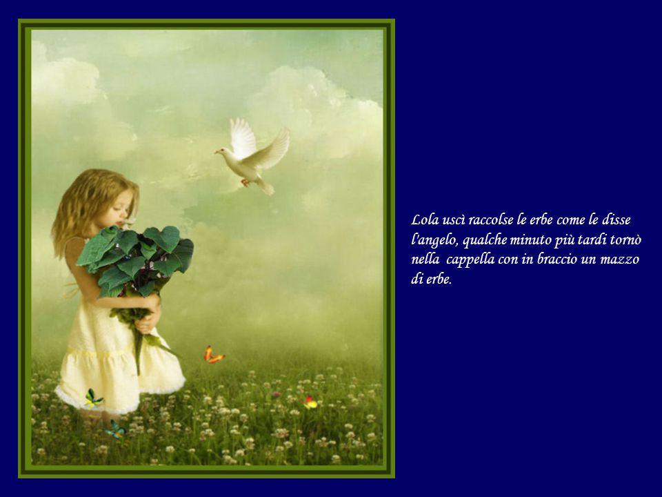 Lola uscì raccolse le erbe come le disse l angelo, qualche minuto più tardi tornò nella cappella con in braccio un mazzo di erbe.