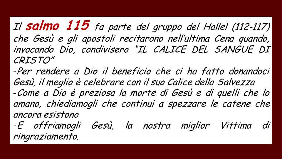 Il salmo 115 fa parte del gruppo del Hallel (112-117) che Gesù e gli apostoli recitarono nell'ultima Cena quando, invocando Dio, condivisero IL CALICE DEL SANGUE DI CRISTO