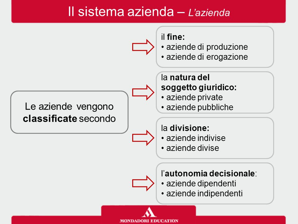 Il sistema azienda – L'azienda