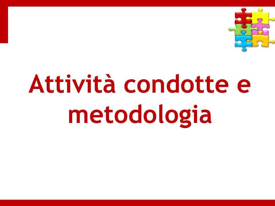 Attività condotte e metodologia