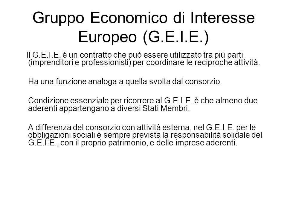 Gruppo Economico di Interesse Europeo (G.E.I.E.)