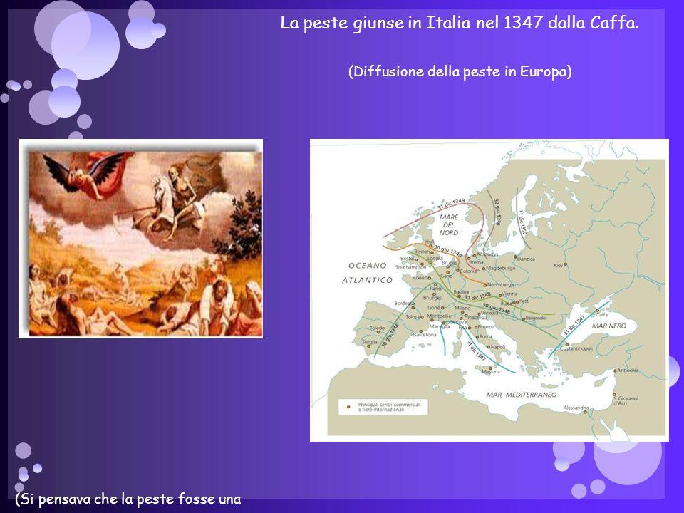 La peste giunse in Italia nel 1347 dalla Caffa.