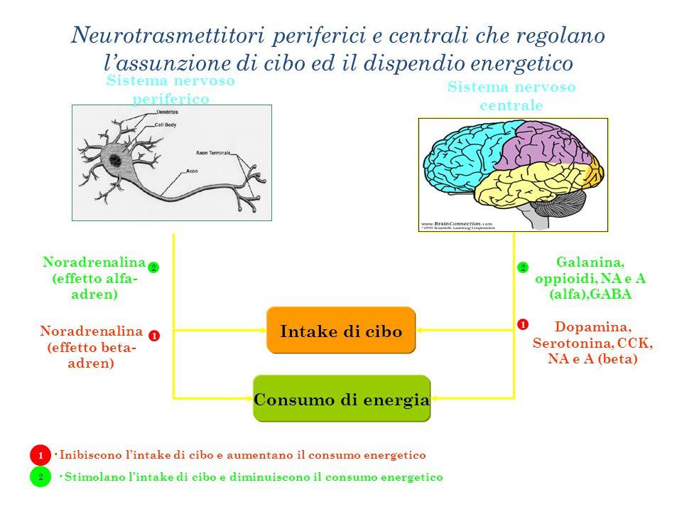 Neurotrasmettitori periferici e centrali che regolano l'assunzione di cibo ed il dispendio energetico