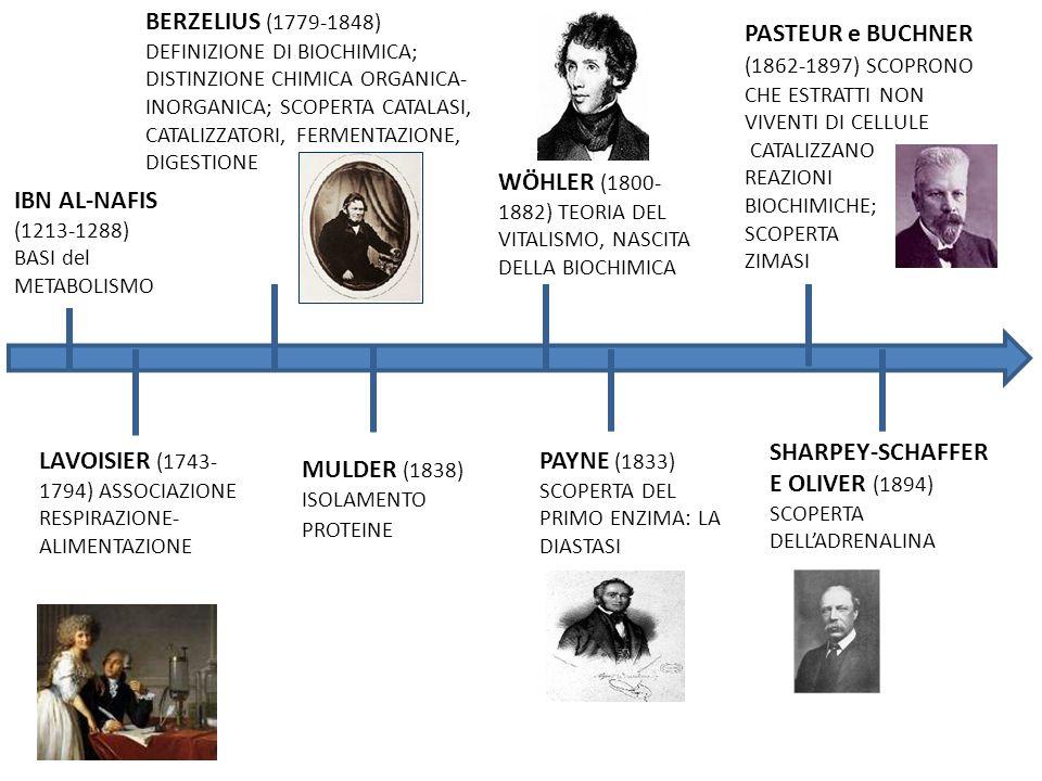 WÖHLER (1800-1882) TEORIA DEL VITALISMO, NASCITA DELLA BIOCHIMICA