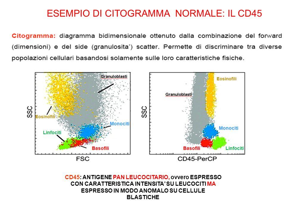 ESEMPIO DI CITOGRAMMA NORMALE: IL CD45