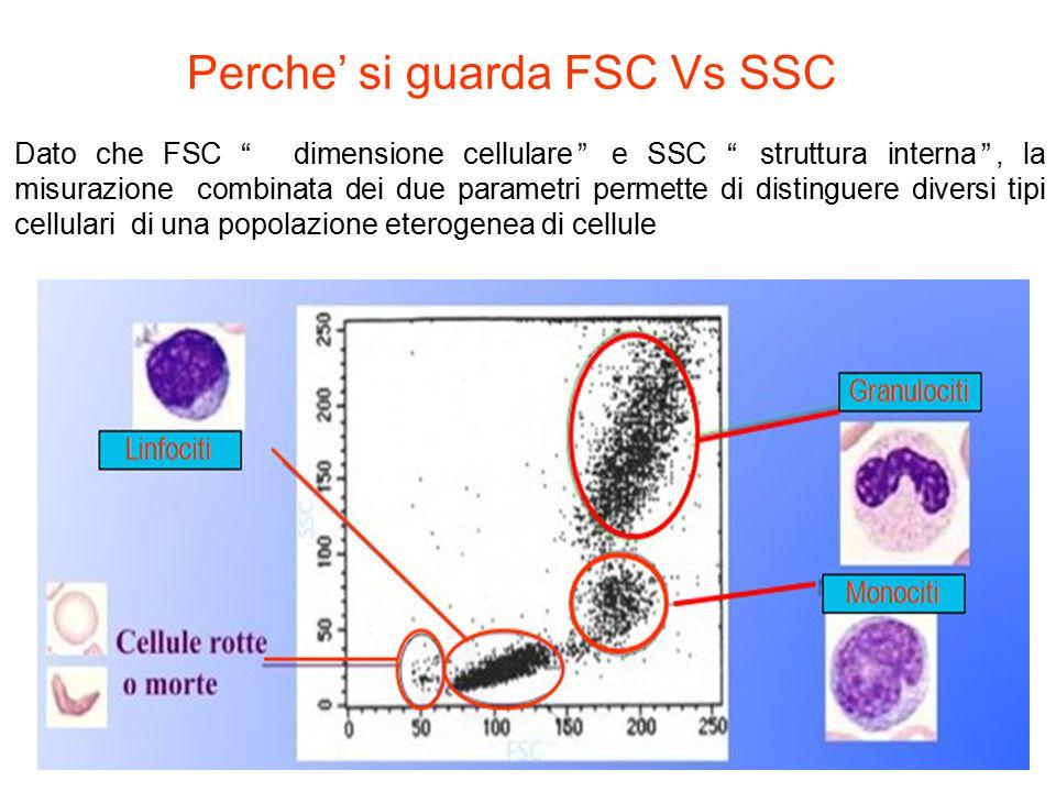 Perche' si guarda FSC Vs SSC