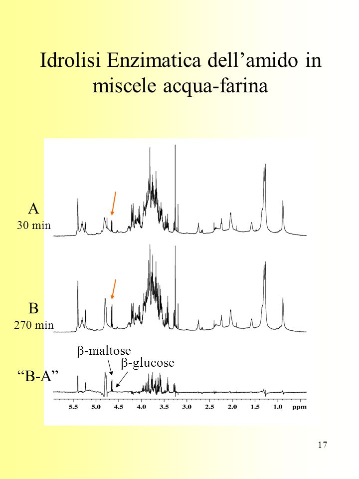 Idrolisi Enzimatica dell'amido in miscele acqua-farina
