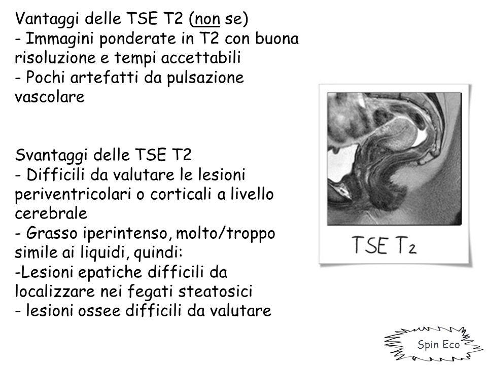 Vantaggi delle TSE T2 (non se)