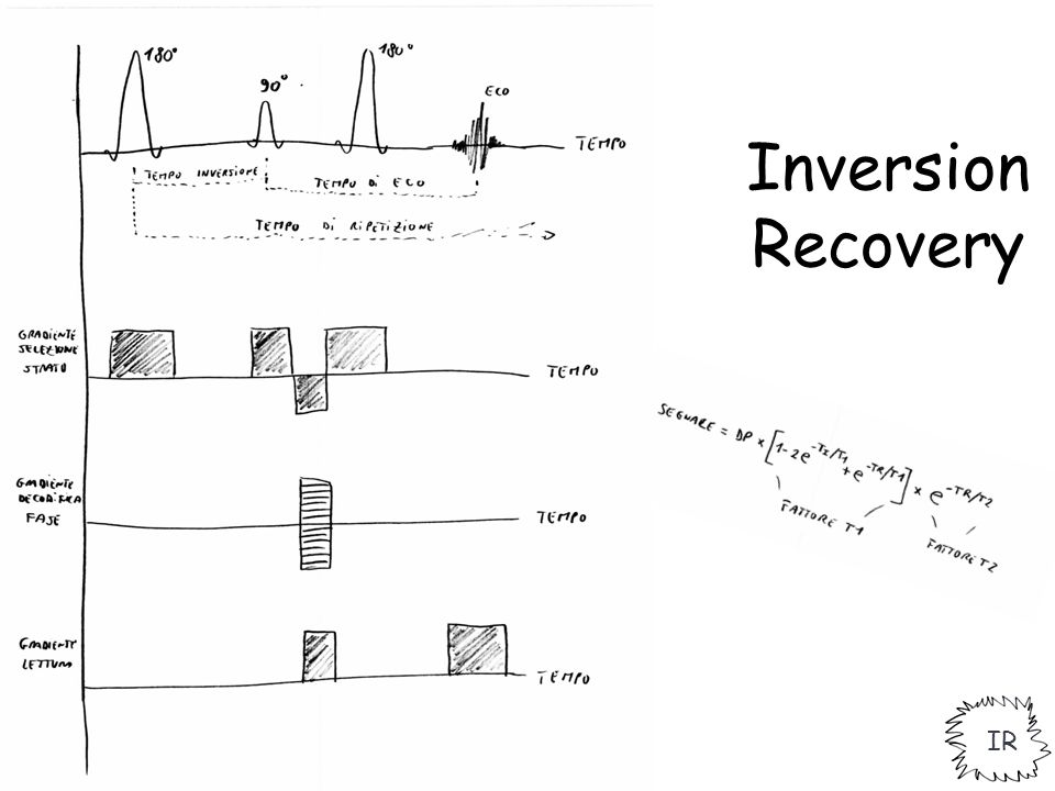 Inversion Recovery IR