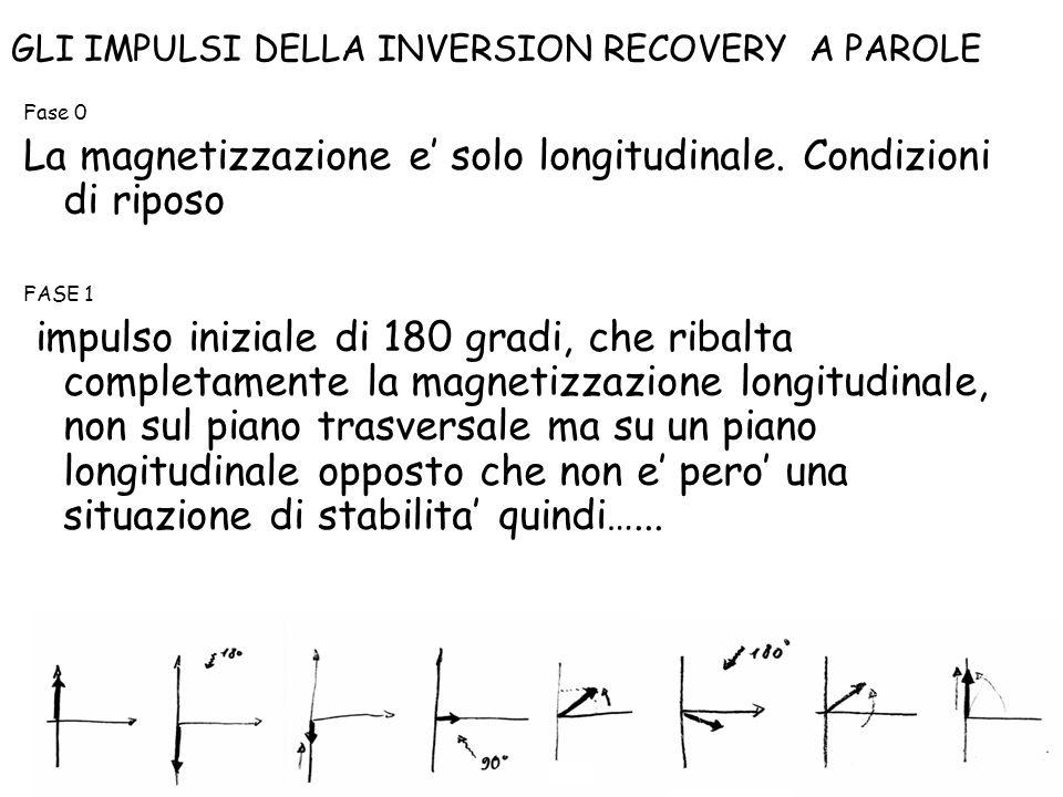 La magnetizzazione e' solo longitudinale. Condizioni di riposo