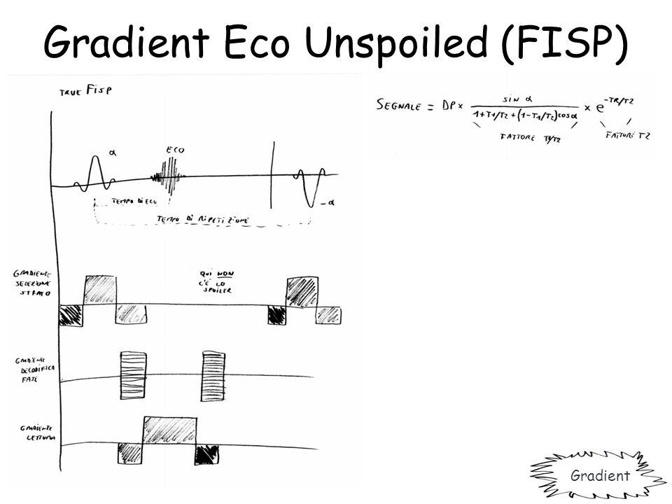 Gradient Eco Unspoiled (FISP)