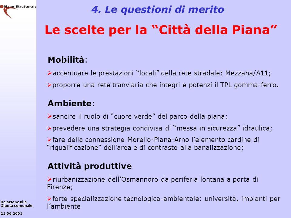 4. Le questioni di merito Le scelte per la Città della Piana