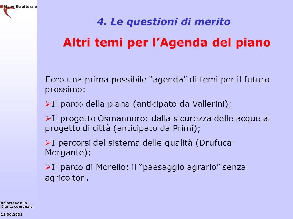4. Le questioni di merito Altri temi per l'Agenda del piano