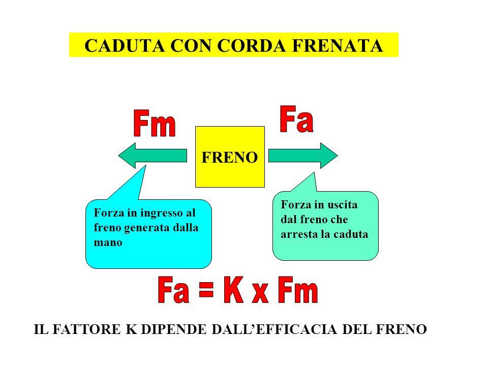 CADUTA CON CORDA FRENATA
