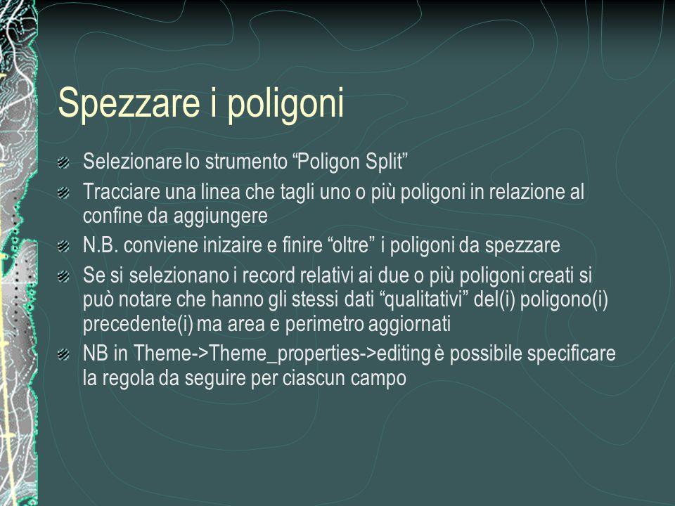 Spezzare i poligoni Selezionare lo strumento Poligon Split