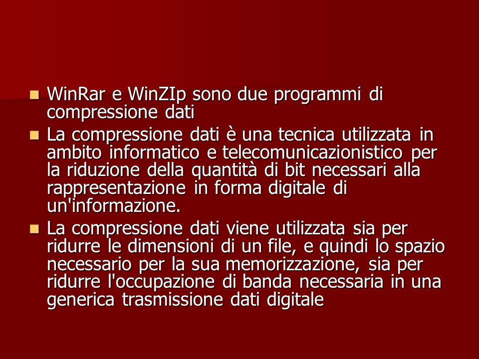 WinRar e WinZIp sono due programmi di compressione dati