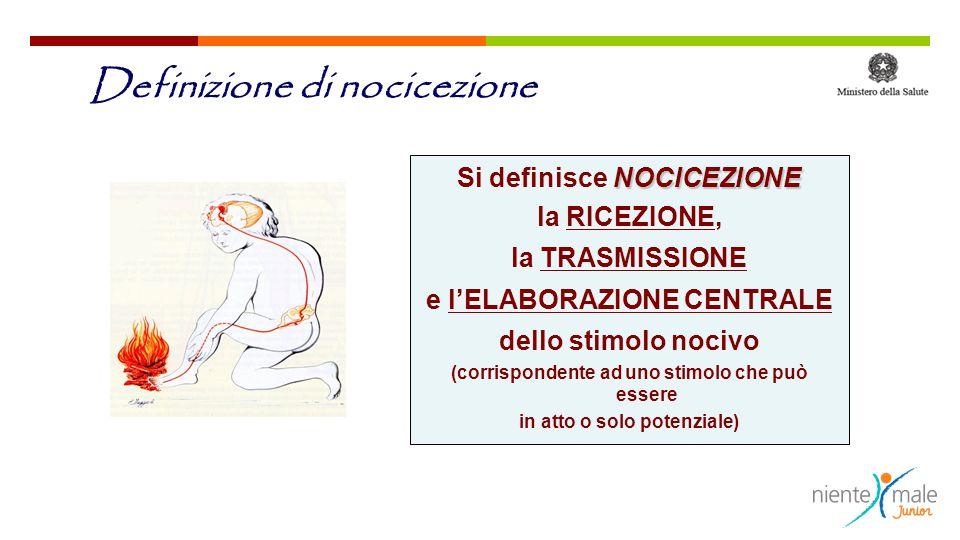 Definizione di nocicezione