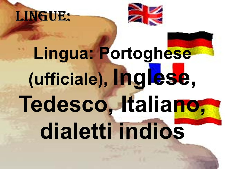LINGUE: Lingua: Portoghese (ufficiale), Inglese, Tedesco, Italiano, dialetti indios
