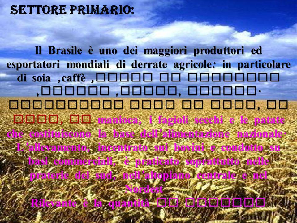 SETTORE PRIMARIO:
