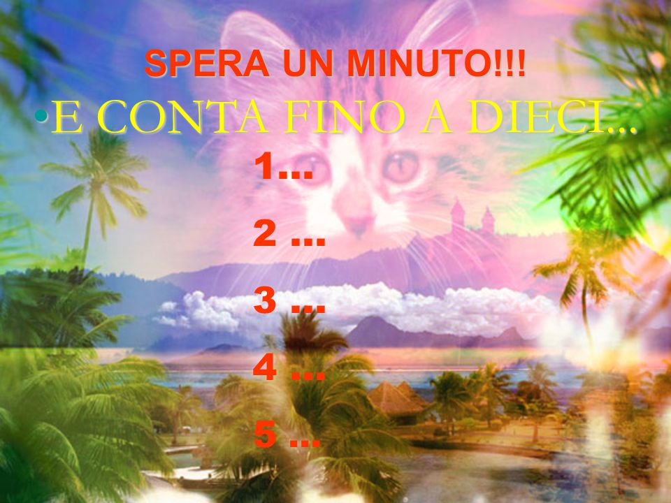 E CONTA FINO A DIECI... SPERA UN MINUTO!!! 1... 2 ... 3 ... 4 ...