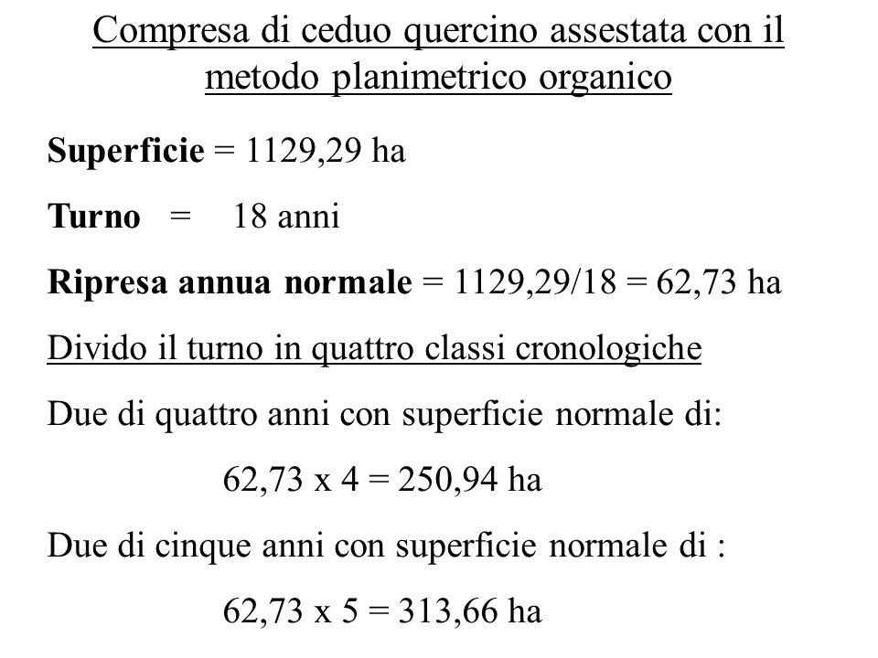 Compresa di ceduo quercino assestata con il metodo planimetrico organico