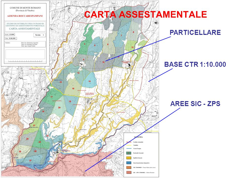 CARTA ASSESTAMENTALE PARTICELLARE BASE CTR 1:10.000 AREE SIC - ZPS