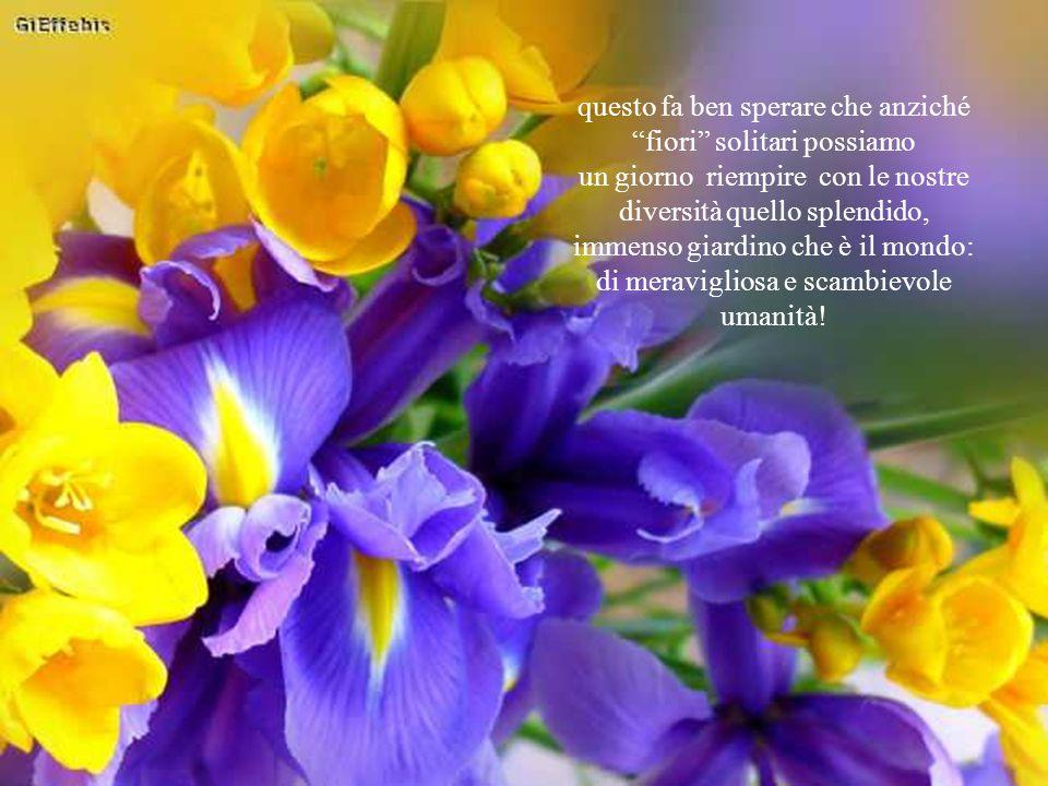 questo fa ben sperare che anziché fiori solitari possiamo