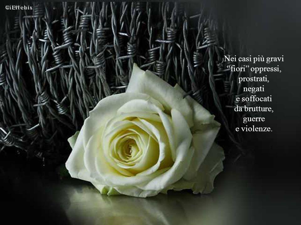 Nei casi più gravi fiori oppressi, prostrati, negati e soffocati da brutture, guerre e violenze.