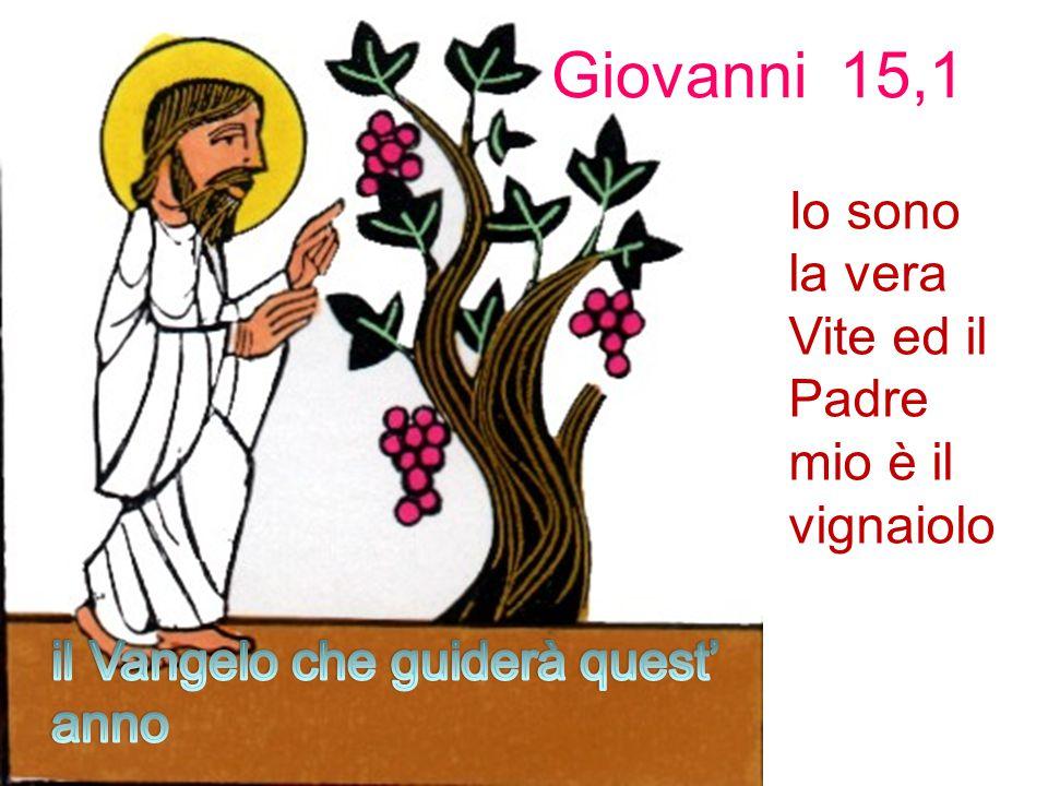 Giovanni 15,1 Io sono la vera Vite ed il Padre mio è il vignaiolo