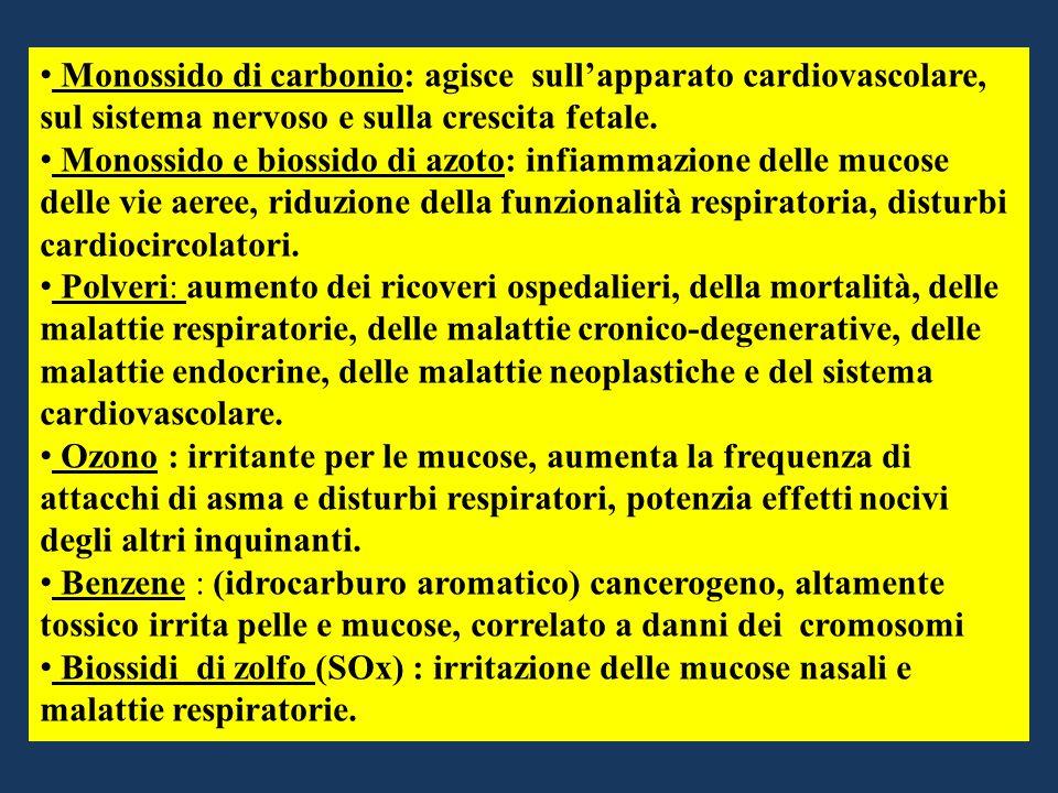 Monossido di carbonio: agisce sull'apparato cardiovascolare, sul sistema nervoso e sulla crescita fetale.