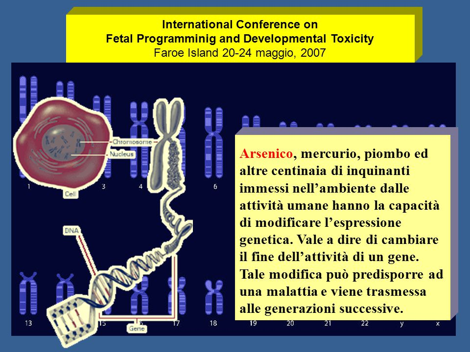 International Conference on Fetal Programminig and Developmental Toxicity