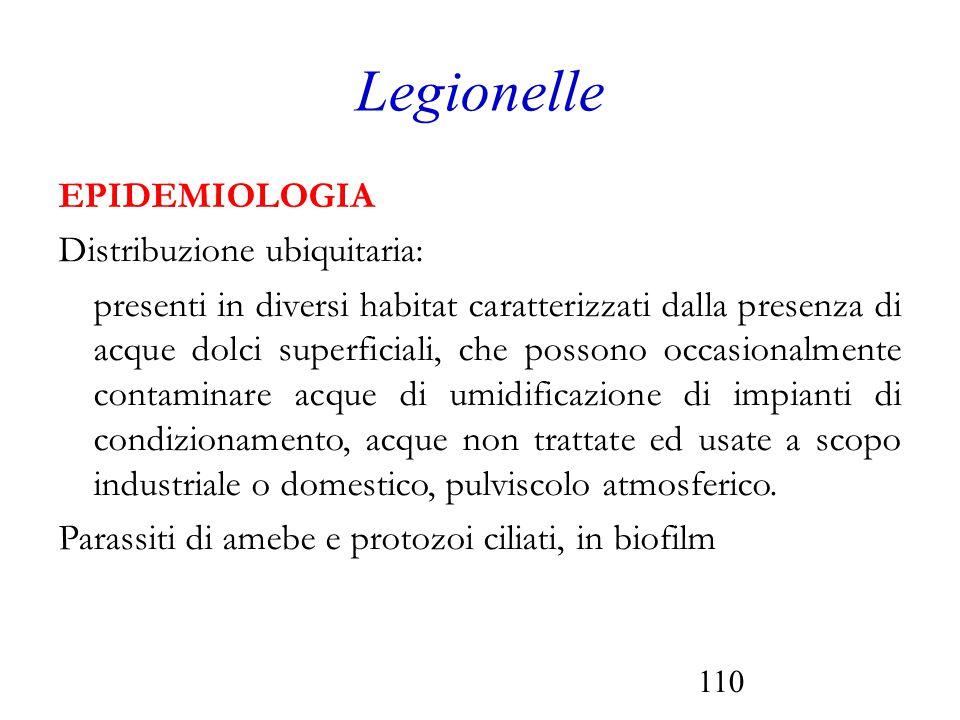 Legionelle EPIDEMIOLOGIA Distribuzione ubiquitaria:
