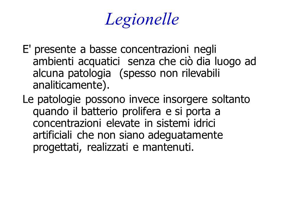 Legionelle