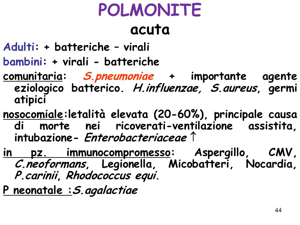 POLMONITE acuta Adulti: + batteriche – virali