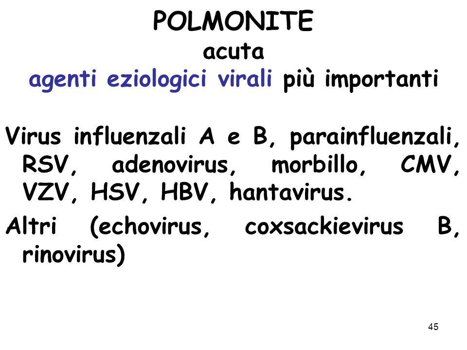 POLMONITE acuta agenti eziologici virali più importanti