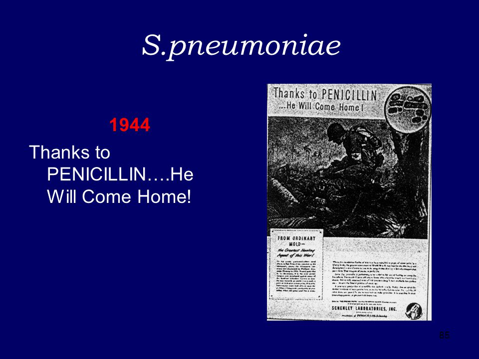 S.pneumoniae 1944 Thanks to PENICILLIN….He Will Come Home! 85